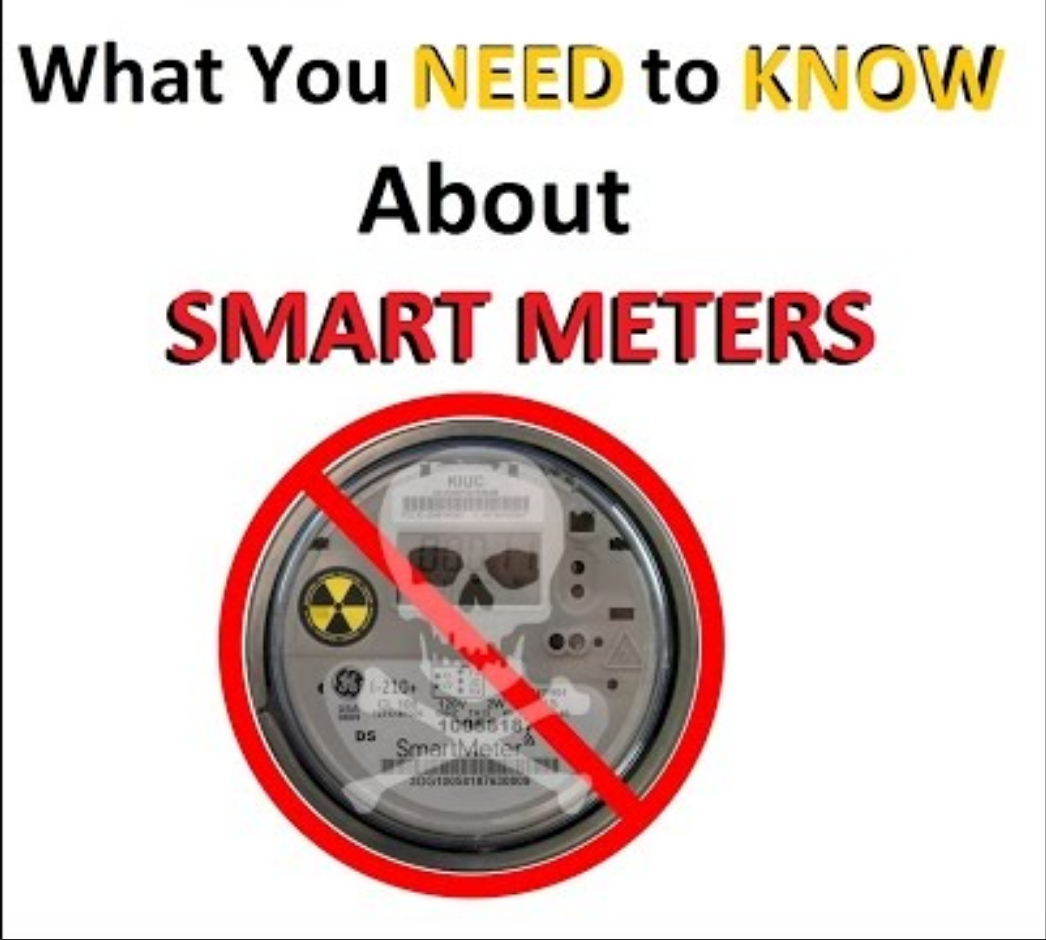 Image result for image of Smart Meter Health Effects WHO Survey and Report